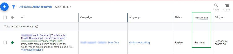 Google-Ads-grants-ad-sample